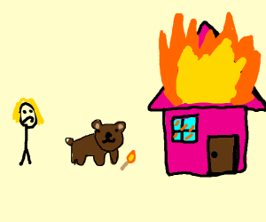 Bear burns down shocked woman's pink house
