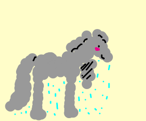 horse made of rainclouds