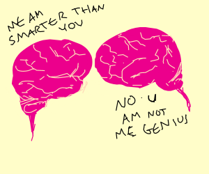 Brains arguing about whose smarter