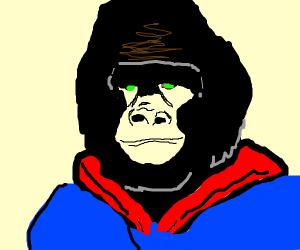 Gorilla crossed with Subparman