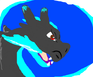 Black Dragon Pokemon