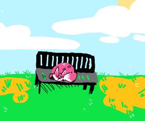 Fox sleeping on a park bench