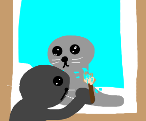 seal painter