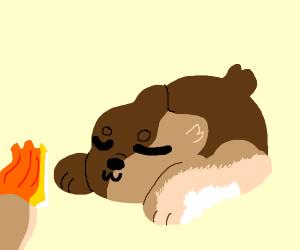 sleepy bear with a torch