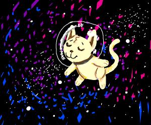 SPACE CAT UWU