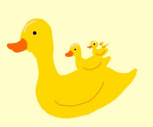 duck-ception