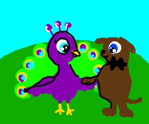 Peacock marrying Doggy