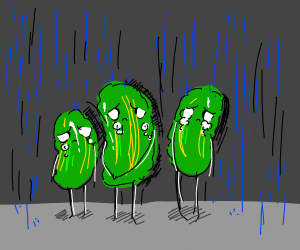 Sad pickles in the rain