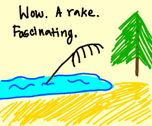 There's a rake in the lake.
