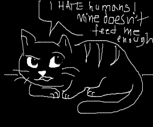 Cat talking trash cuz he aint getting fed