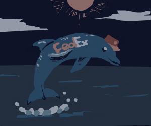 Dolphin FedEx - Dolphedex