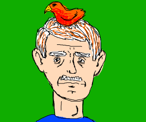 red and white haired guy with a bird on head