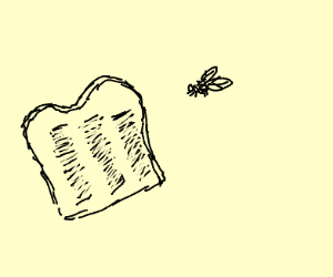 fly flies at toasted toast
