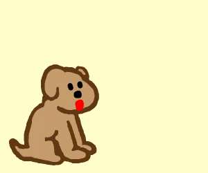 A pwecious widdle doggy
