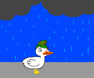 Duck Detective goes outon a rainy day