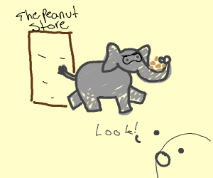 An elephant is robbing the peanuts!