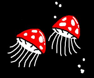 fly agaric jellyfish