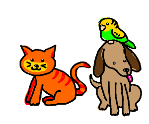 Kitty, pupper, and birb