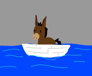 Donkey in a little boat in the sea