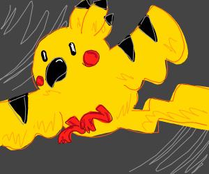Pikachu the bird