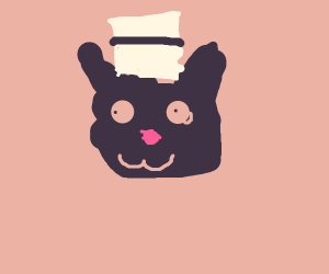 Cute cat with tiny hat