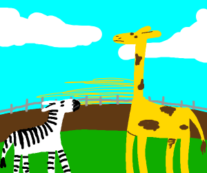 A zebra and a giraffe.