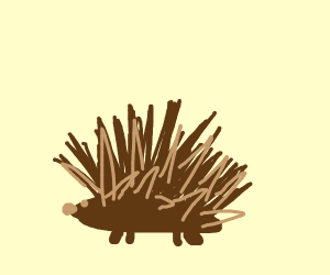 Organic Hedgehog