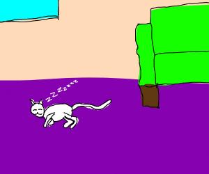 Cat procrastinating