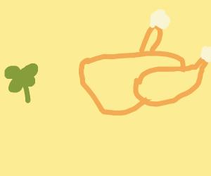 Irish thanksgiving turkey