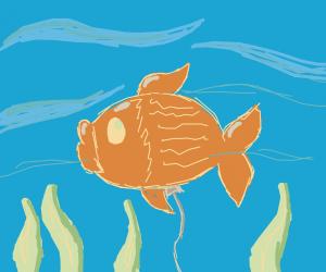 a fish-shaped balloon