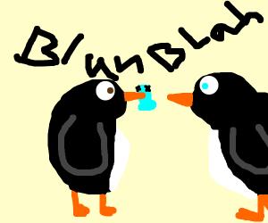 Two blackbirds having a conversation