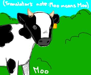 Cow goes moo