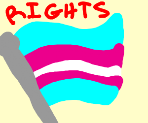 TRANS RIGHTS!!!!!!!!