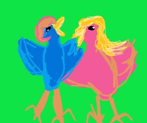 Drama Birds