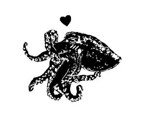 Little blushing octopus