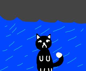 Black kitten sadly soaking under rain