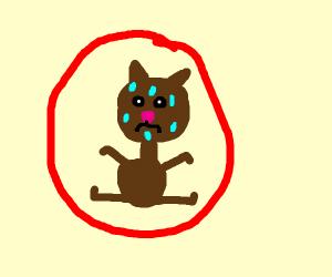 a cat in a hot air spiderman balloon