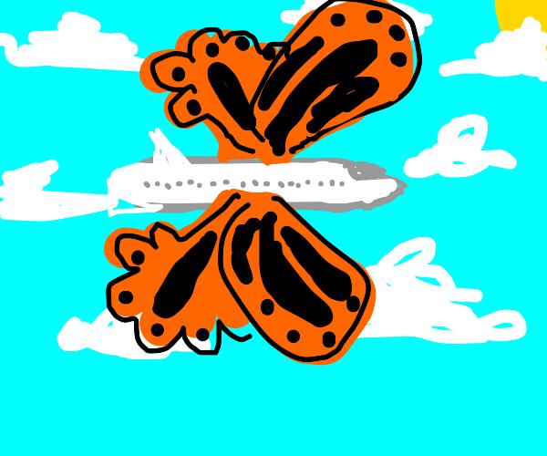 Butterfly plane
