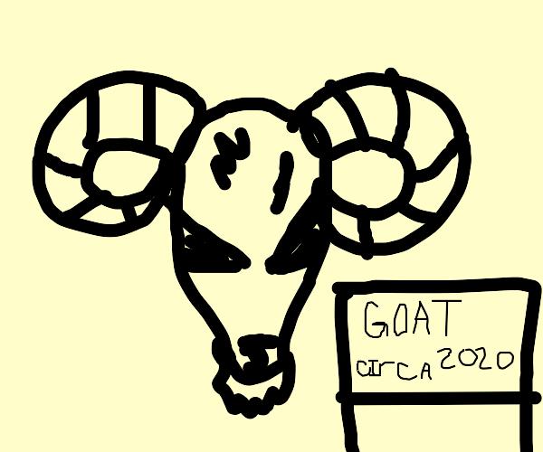 Goat Museum