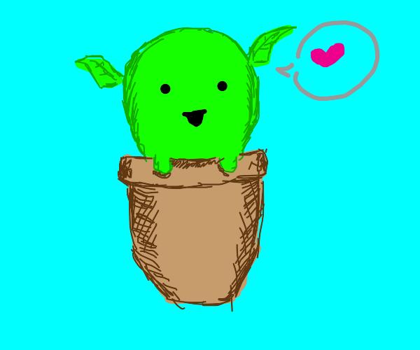 pretty cool plant baby