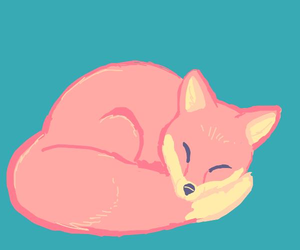 Fox sleeping on its tail