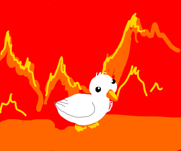 White duck in hell