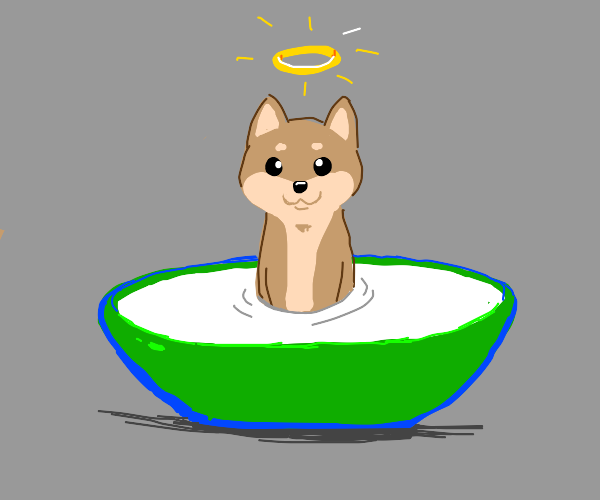 Holy doggo in cereal bowl