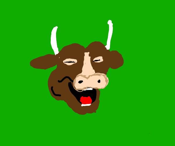 cow Vibing