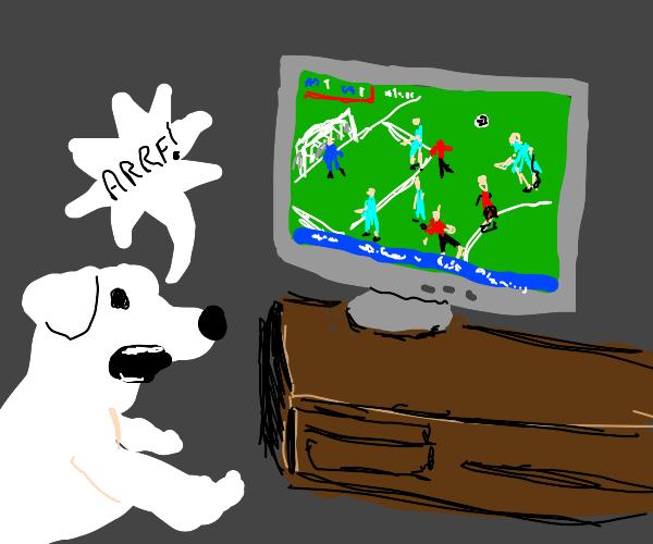 Dog barks at football.