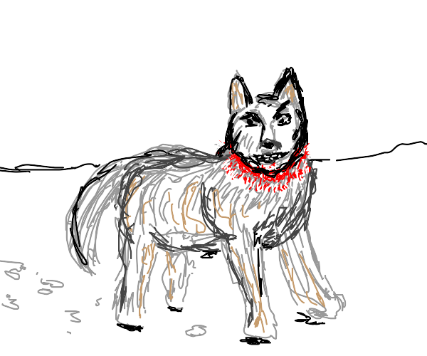 Wolf With Red Fur on Neck