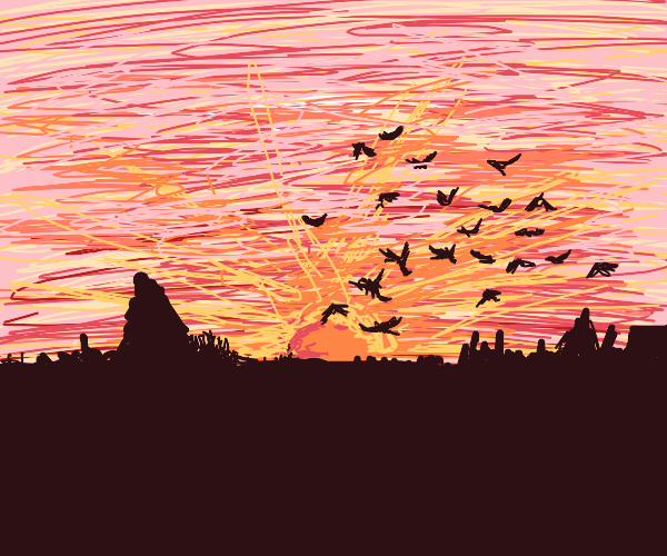 Bird flock flies towards the sunset