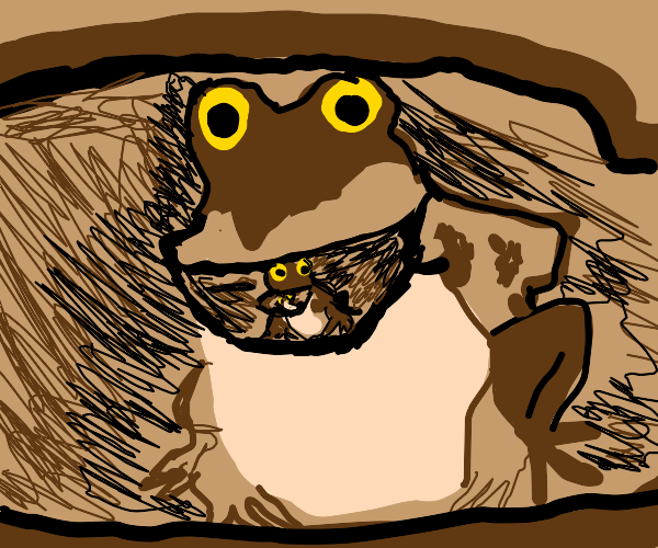 Toadception