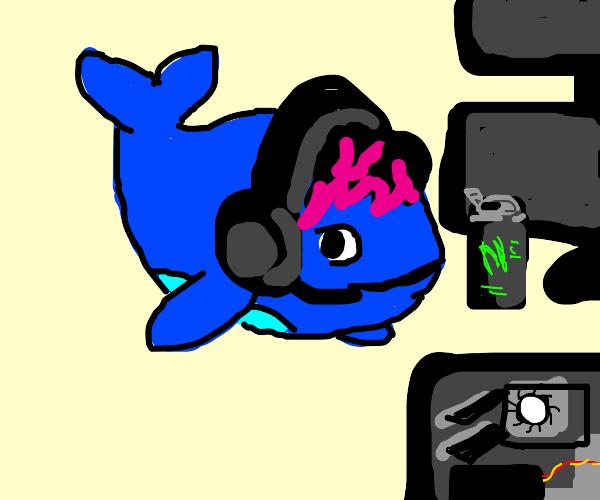 Gamer Whale