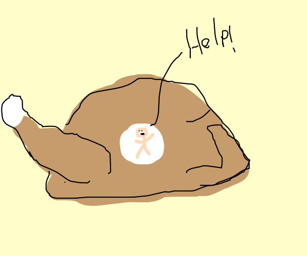 oh no I've been trapped in a roast chicken